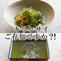 キリンサイ(冷凍)1kg【高知でしか育たない栄養価抜群の海藻】