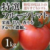 特選フルーツトマト 約1Kg(20-24玉)【糖度10度以上の選りすぐりトマト】
