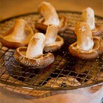 本山町 大久保誠二さんの原木椎茸 500g【風味や香り、肉厚さにも優れる健康食材】
