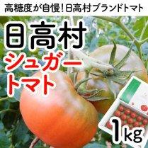 日高村シュガートマト約1Kg(16玉or20玉入り)【トマトの村からお届け】