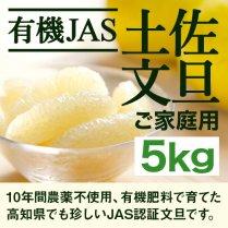 【有機JAS 無農薬】土佐文旦 約5kgご家庭用