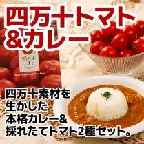 四万十とまとの採れたてトマトセット【本格カレー&採れたてトマト2種セット】