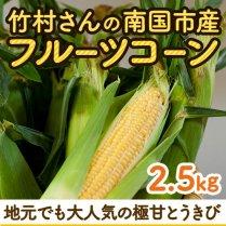 竹村さんの南国市産フルーツコーン 約2.5kg(9-10本)【期間限定】
