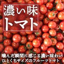 濃い味トマト(約2kg箱)【ひと口サイズのフルーツトマト】