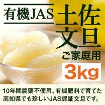 JAS 有機栽培の土佐文旦 約3kg【農薬不使用・自然栽培】