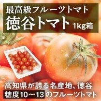 徳谷トマト 1kg箱(14-20玉)/【高知が誇る最高級フルーツトマト】