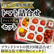 まるごと高知特選カラフルトマトとフルーツトマトの詰合せセット/【至高の逸品トマト8種類セット】