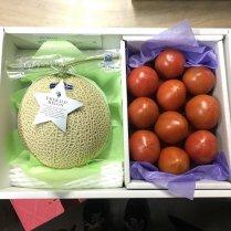 まるごと高知特選!旬のフルーツ詰合せ【季節のイチオシセットをお届け!】の商品画像