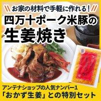 四万十ポーク米豚の生姜焼きセット/【ぐっと美味しくなる料理長ワンポイントアドバイス付き】