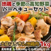 土佐はちきん地鶏肉と季節の高知野菜バーベキューセット