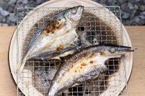 ただいま送料無料サービス中!漁師町室戸の新鮮干物セット【黒潮が育んだ海の幸を贅沢詰合せ】