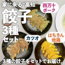 """家に来る""""高知""""餃子3種セットの商品画像"""