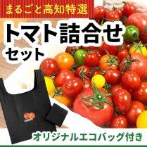 高知産トマト詰合せセット+オリジナルエコバッグ付き【送料込価格】