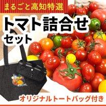 高知産トマト詰合せセット+オリジナルトートバッグ付き【送料込価格】の商品画像