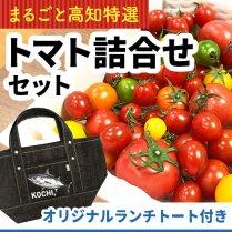 高知産トマト詰合せセット+オリジナルランチトート付き【送料込価格】の商品画像