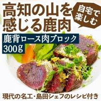 鹿 背ロース肉ブロック 300g【シェフ考案のレシピ付きセット】の商品画像