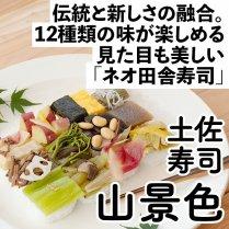 土佐寿司「山景色」の商品画像