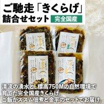 高知県産 ご馳走「きくらげ」詰合せセットの商品画像