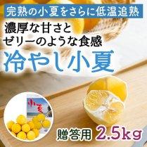 冷やし小夏 約2.5kg(12-20個)【濃厚な甘さとゼリーのような食感】