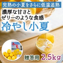 冷やし小夏 約2.5kg(12-20個)【濃厚な甘さとゼリーのような食感】の商品画像