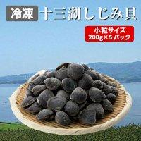青森県 十三湖産 中粒 冷凍 しじみ貝 200g×5パック(1kg入り)