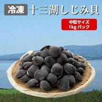 青森県 十三湖産 大粒 冷凍 しじみ貝 1kg入り