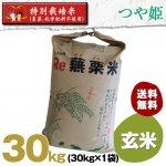 令和2年度宮城県産・つや姫|特別栽培米(農薬、化学肥料不使用)|玄米30キロ袋