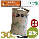 令和2年度宮城県産・つや姫|省農薬米(除草剤1回・殺虫殺菌剤不使用)|玄米30キロ袋