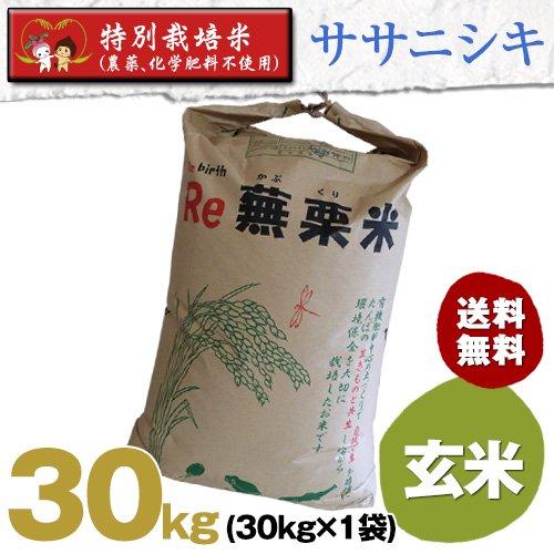 平成28年度宮城県産・ササニシキ|特別栽培米(農薬、化学肥料不使用)|玄米30キロ袋