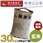 令和2年度宮城県産・ササニシキ|特別栽培米(農薬、化学肥料不使用)|玄米30キロ袋
