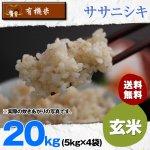 玄米20キロ令和2年度宮城県産・ササニシキ|有機米(有機JAS認証)