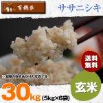玄米30キロ令和2年度宮城県産・ササニシキ|有機米(有機JAS認証)