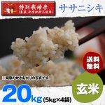 玄米20キロ令和2年度宮城県産・ササニシキ|特別栽培米(農薬、化学肥料不使用)