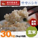 玄米30キロ令和2年度宮城県産・ササニシキ|特別栽培米(農薬、化学肥料不使用)