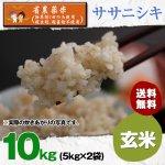 玄米10キロ令和2年度宮城県産・ササニシキ|省農薬米(除草剤1回・殺虫殺菌剤不使用)