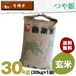 【6ヶ月定期便】宮城県産・つや姫|有機米|玄米30キロ袋【有機JAS認証】