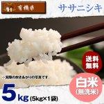 【6ヶ月定期便】無洗米5キロ宮城県産・ササニシキ|有機米(有機JAS認証)