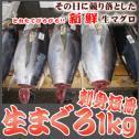 <生マグロ(鮪/まぐろ)刺身短冊正味1kg>【冷凍・冷蔵便同梱可】