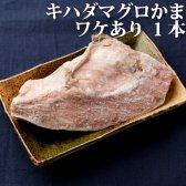 【単品】<キハダマグロ(鮪/まぐろ)のカマ(かま)1個>【冷凍限定/同梱可能】