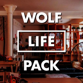 <img class='new_mark_img1' src='https://img.shop-pro.jp/img/new/icons3.gif' style='border:none;display:inline;margin:0px;padding:0px;width:auto;' />WOLF LIFE PACK