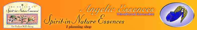 天使とお花のEssences Shop