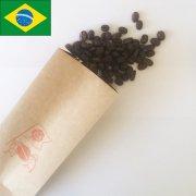 ブラジル ファゼンダ パッセイオ