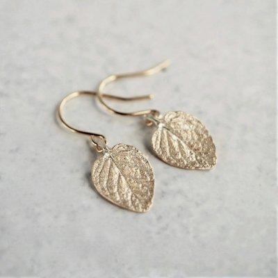 Marjoram earrings
