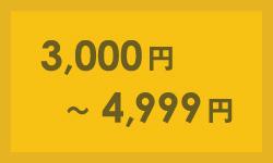3000円〜4999円