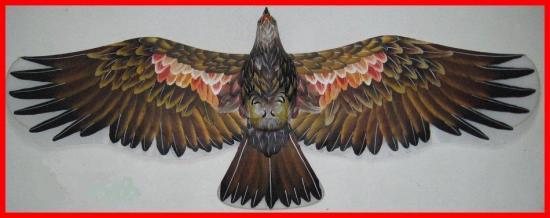 オーダーメイド栴鷲楕盤鷹)A