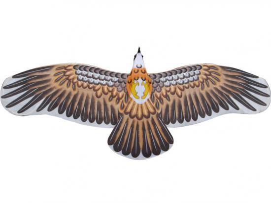 中華楕130cm盤鷹側パンイン)Y029