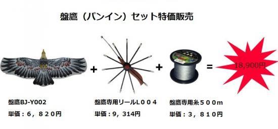中華楕120cm栴鷲陀-盤鷹(パンイン)セット(盤鷹BJ−Y002+専用リールL004+盤鷹専用糸500m)