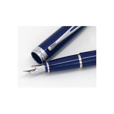 アウロラ 万年筆 イプシロン De Luxe B12/CB ブルー/クローム03