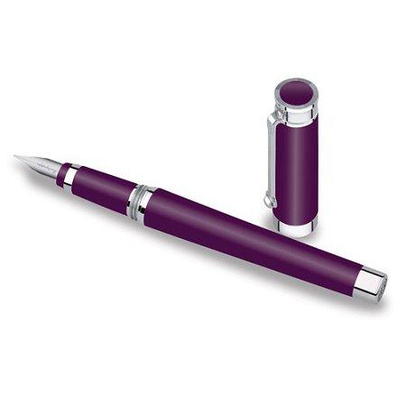 モンテグラッパ 万年筆 パローラ パープル02