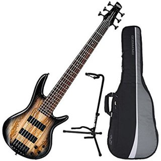 Ibanez GSR206SM 6-String Electric Bass (Natural Grey Burst) w/ Spalted Maple Top w/ ギター